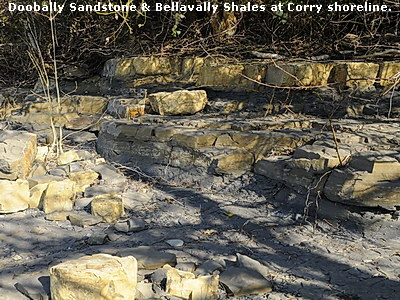 Doobally Sandstone & Bellavally Shales at Corry shoreline.